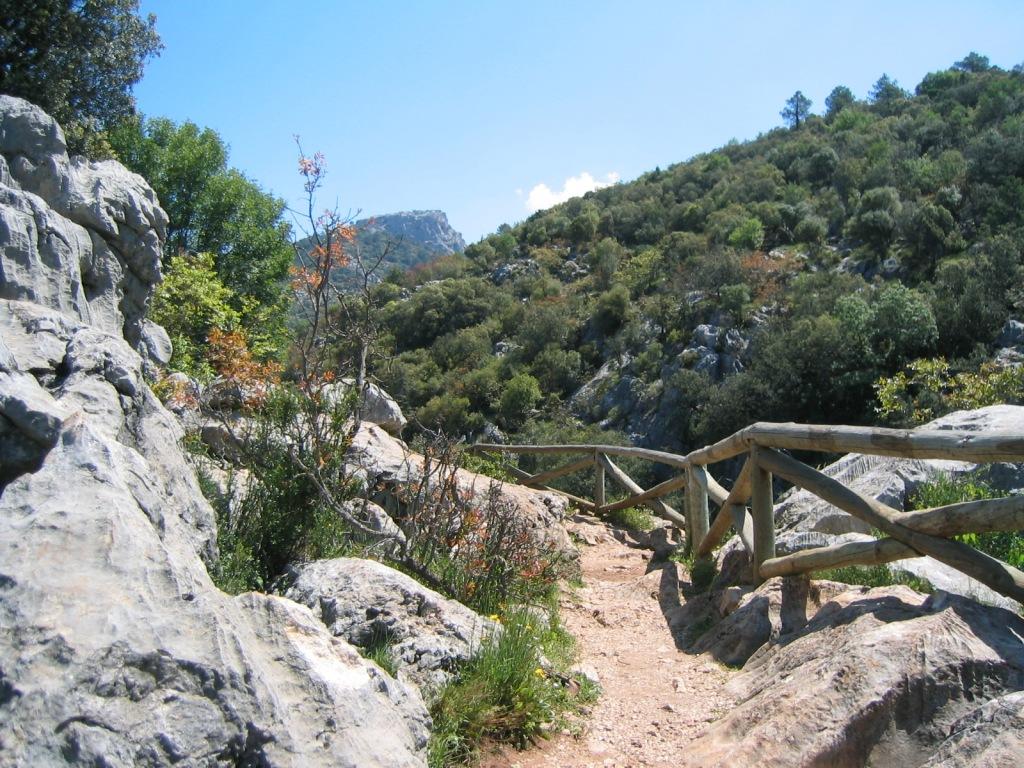 Sierra de Cazorla (Jaén) mayo 2004