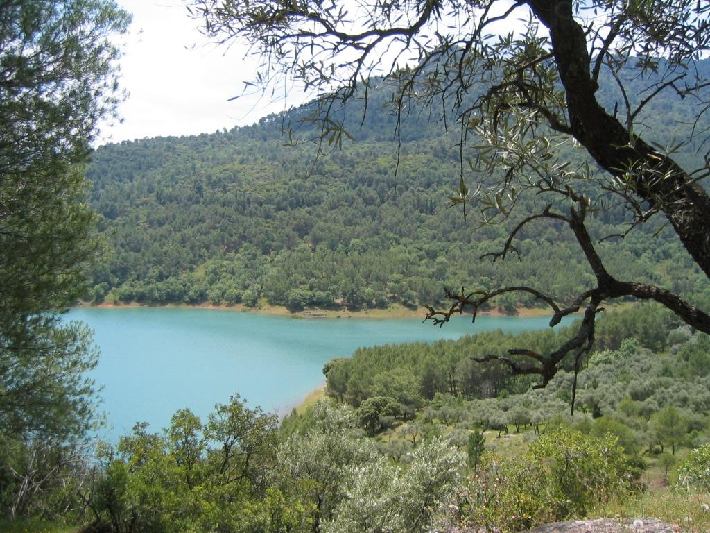 Embalse del Tranco (Jaén) mayo 2004